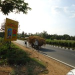 on-the-road-to-mysore-nov-013